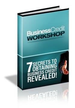 7 Secrets to Obtaining Business Credit Revealed PDF